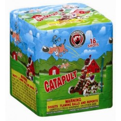 Wholesale Fireworks Catapult Case 24/1