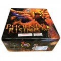 Phoenix Rising *LIMITED QTY*