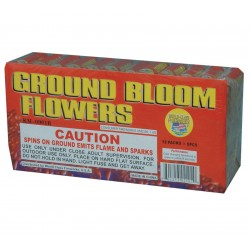 Ground Bloom Brick 72/Ct
