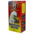 Wholesale Fireworks Whistling Buster Artillery Shells Case 12/6